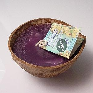 Beeswax Island Floating Hawaiian Coconut Candle Pikake Scented